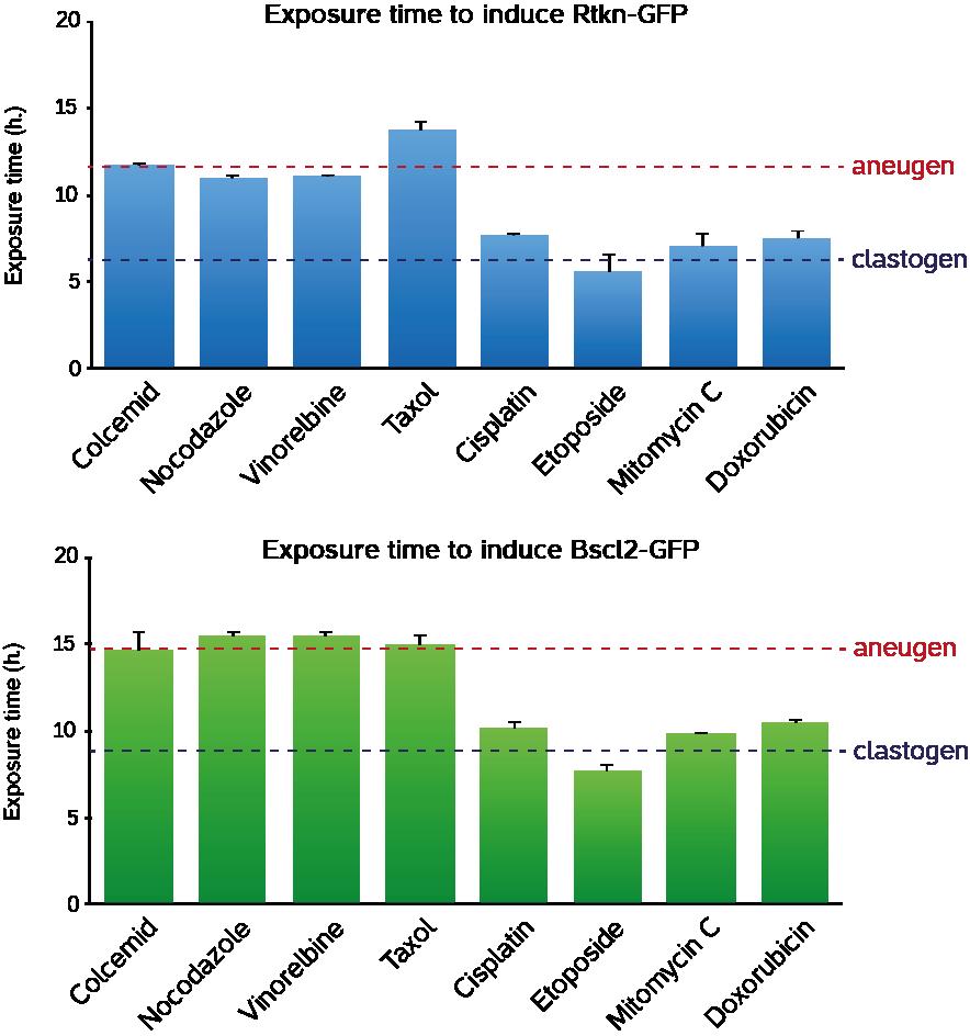 clastogens-vs-aneugens-table